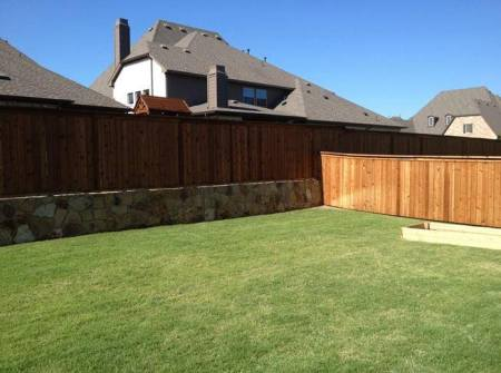 frisco texas yard examples