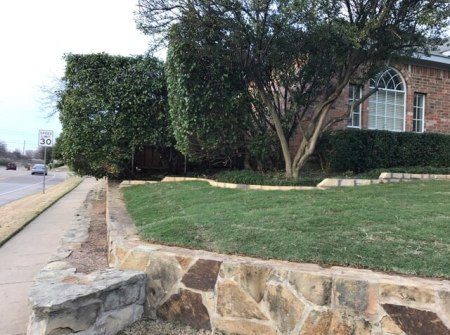 lawncare and landscaping ideas for north texas