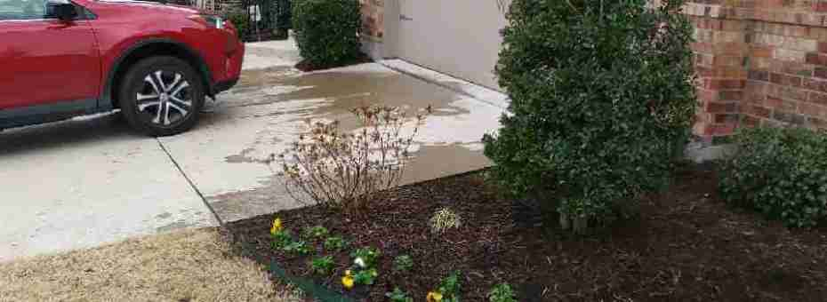 maintaining dry lawns