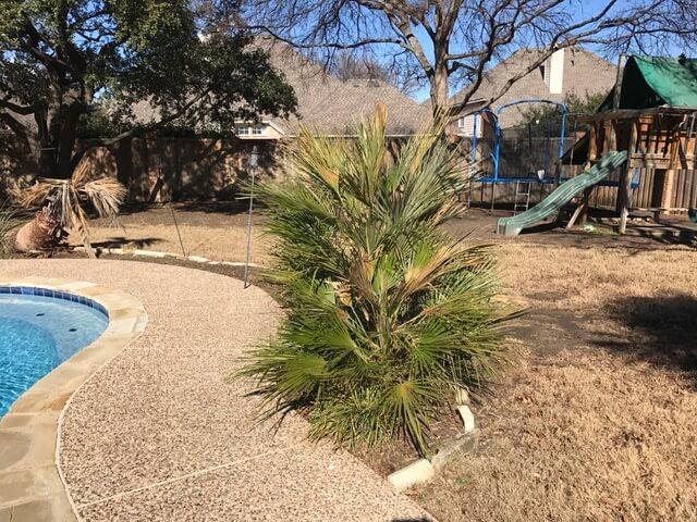 Landscape Design Plano TX