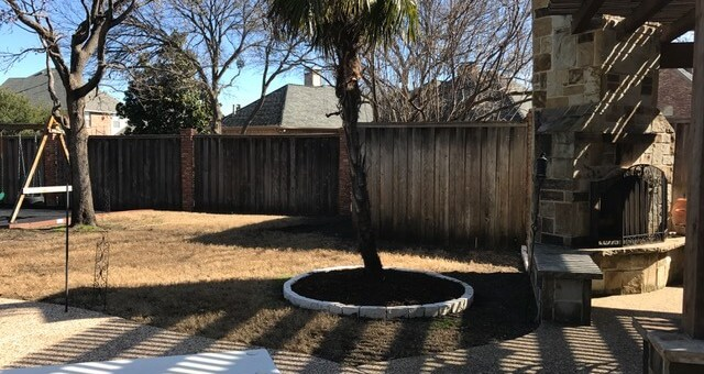 Landscaping Design Pool and Trees