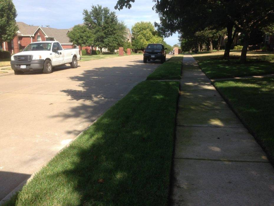frisco, tx lawn with shade ideas