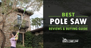 Best Pole Saw Reviews 2017 With Buying Guide