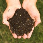 How to Create a Compost Pile