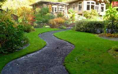 How-to-treat-burned-out-lawn