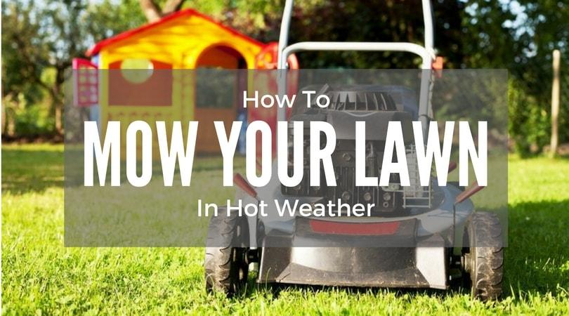 How-To-Mow-Your-Lawn-In-Hot-Weather