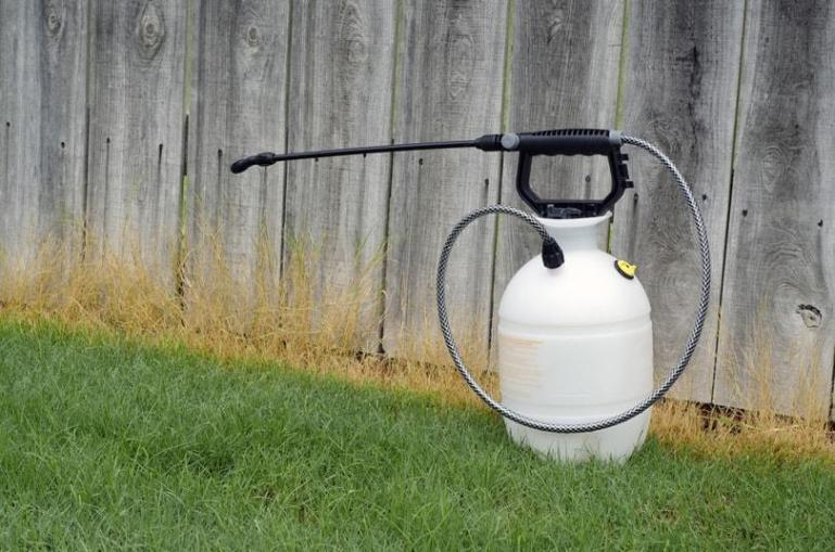 I.How to choose the best weed killer for your lawns?