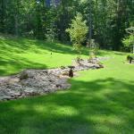 lawn-maintenance-st-augustine-pic