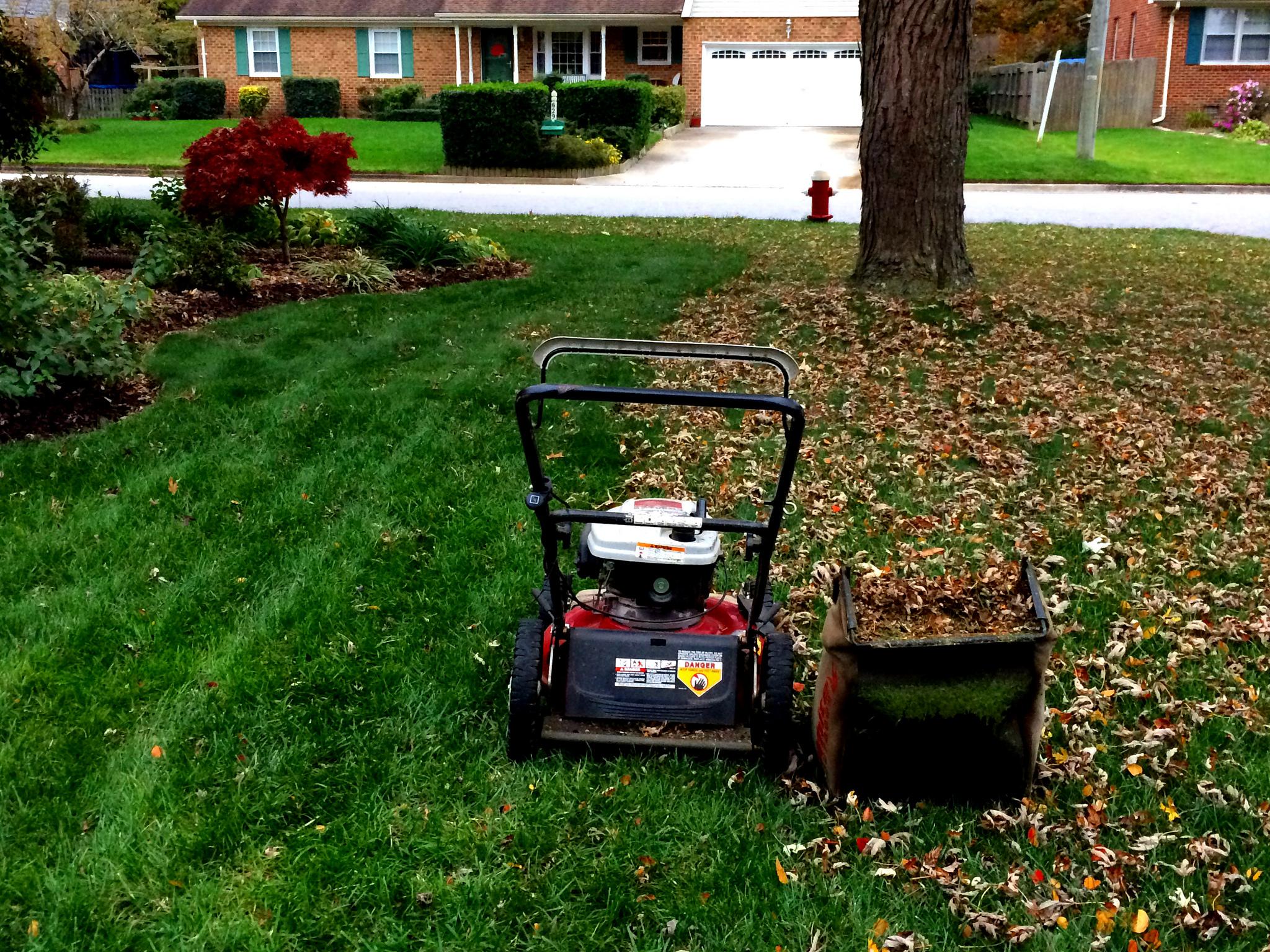 Mulching Leaves Lawn
