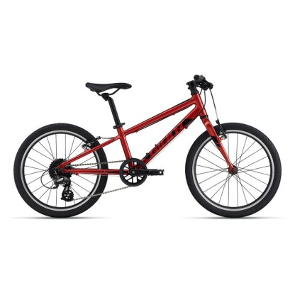 Giant ARX 20 Kids Lightweight Bike   Grenadine 2022
