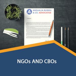 NGOs AND CBOs