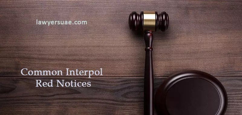 6 Common INTERPOL Red Notices and What You Can Do About Them