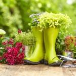 Remise des prix des maisons fleuries