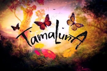 Tamaluna Handsketched Typeface by Layerform Design Co