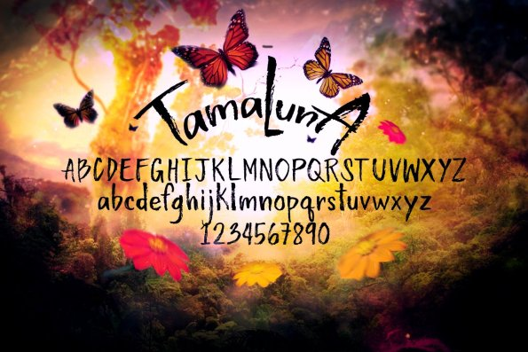 Tamaluna Handsketched Typeface by Layerform Design Co
