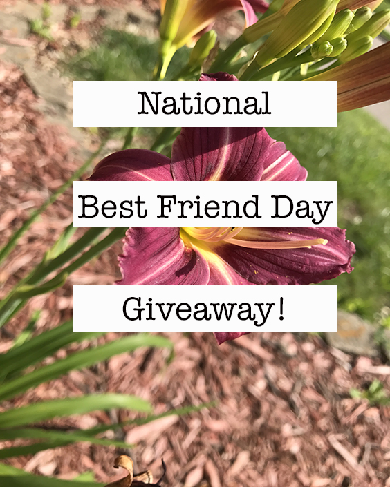 National Best Friend Day Giveaway