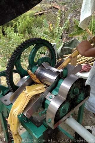 Preparando guarapo o jugo de caña