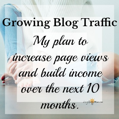 Growing Blog Traffic- How I Plan to Increase My Traffic from Zero to 1000 Per Day in 10 Months
