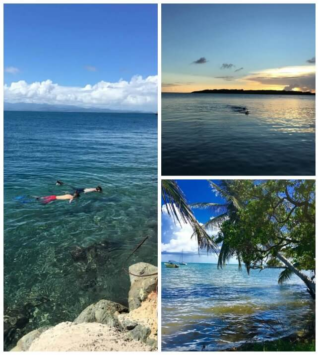Vieques puerto Rico Snorkel