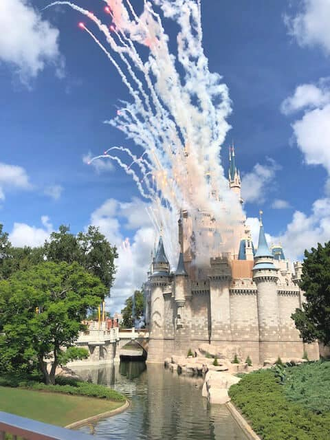 Disney World's Magic Kingdom with a baby and toddler