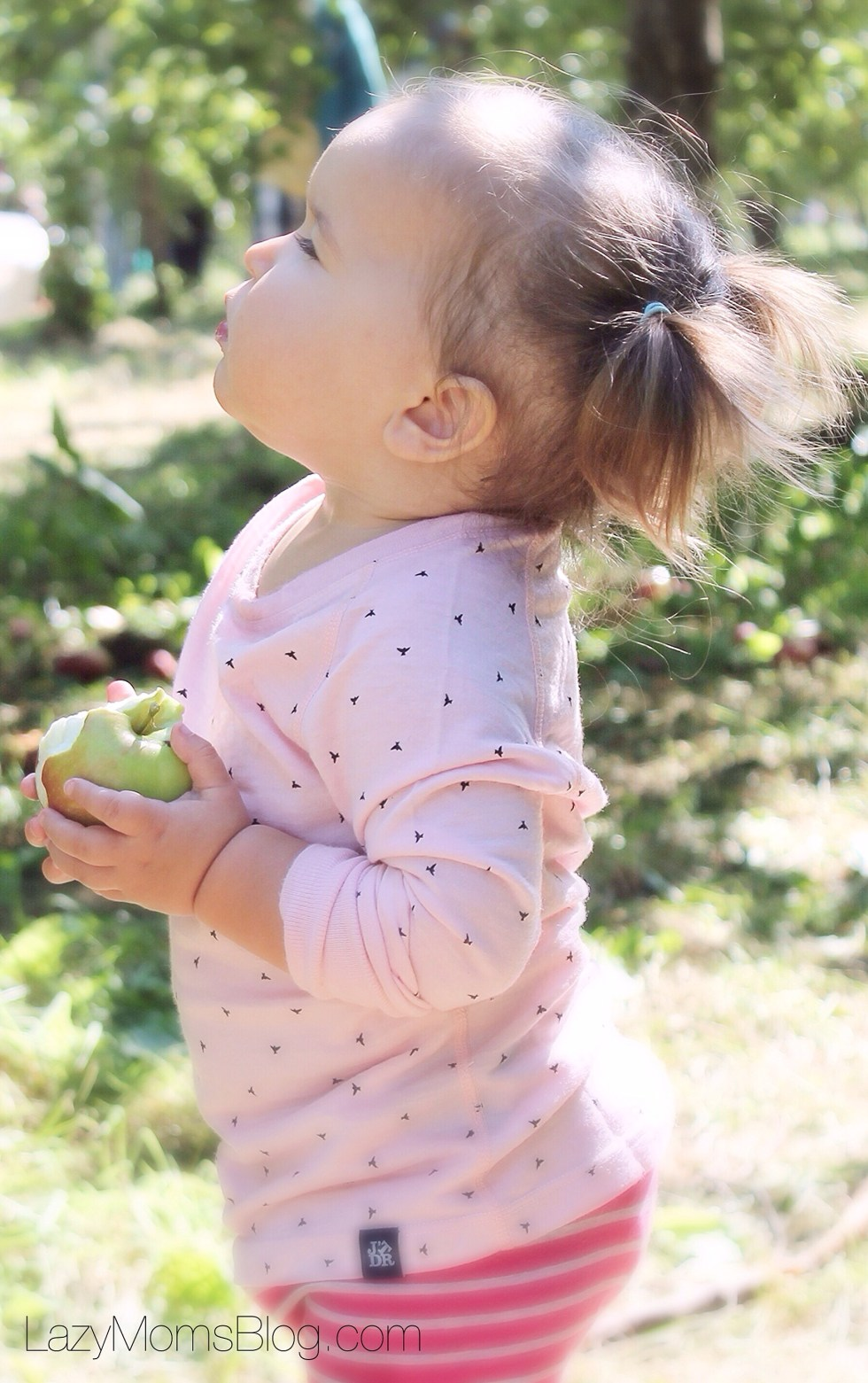 Why merino is the best choice for your child