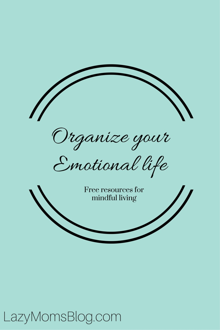 Forget about the drawers, closets and hallways. There's something that's much more important, and it's your emotional life. If you feel unhappy in your routine, drained emotionally by people around you, and lost in your life, then it's time to rethink and reevaluate, it's time to organize your emotional life. <strong>Of course, it's not as easy as making space in the drawers. But if you'll only take some time to answer yourself these questions, you just might start the new year with a fresh regard, a new attitude, and reorganized emotional life! </strong> So grub a cup of coffee, a notepad and a pen, and let's start a little self-help session!