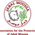 Logo APJM-EN