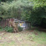 Shed from the rear