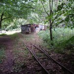 Shed from front