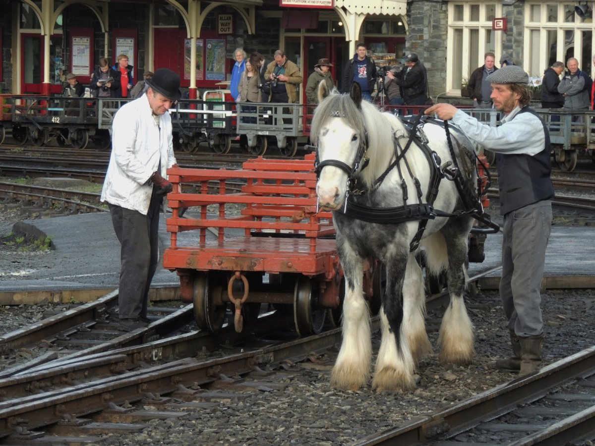 Shunting — the traditional way!
