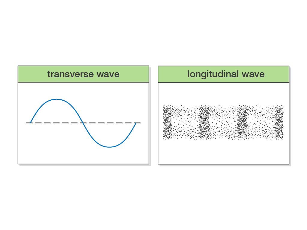 Transverse Waves And Longitudinal Waves