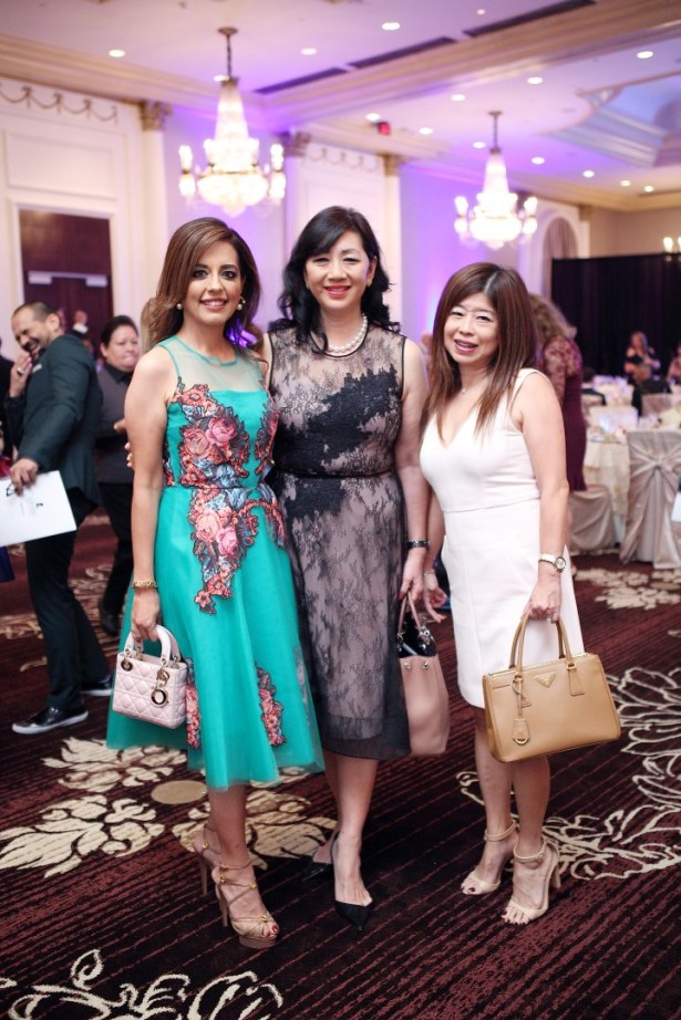 Ayesha Jokhio, Alice Brams and Rose Chen