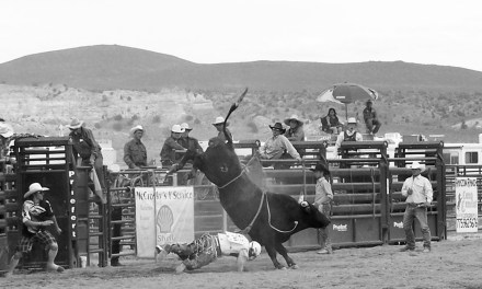 LCHS hosts state rodeo