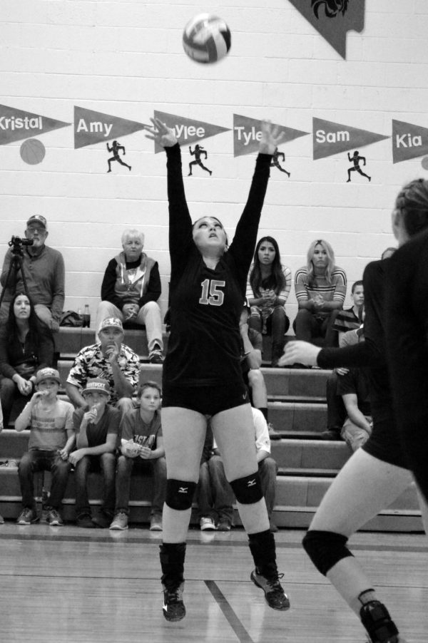 Lincoln Volleyball Season Ends Against Meadows - Lincoln ...