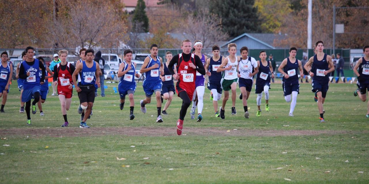 Cross-Country Runners Compete at State