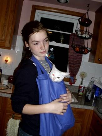 kitten-in-tote