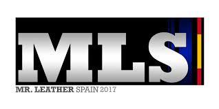 MLS2017 logo
