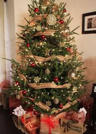 Recycle Your Used Christmas Tree This Year during Grinding of the Greens! @ Various locations and times beginning 12/26/18 - 1/10/19  in Lexington and Richland Counties