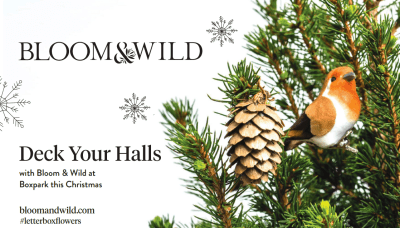 Bloom & Wild - Tiny Christmas Trees, perfect for small spaces 10