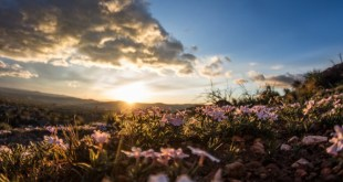 How the Resurrection Creates Hope