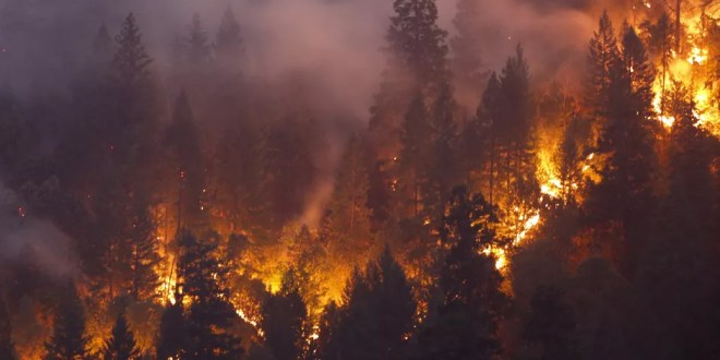California Mormons See Miracles Among the Ashes
