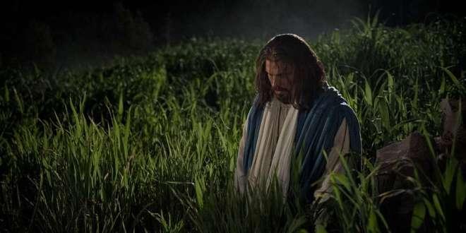 Jesus Suffers in Gethsemane | 18 April 2019