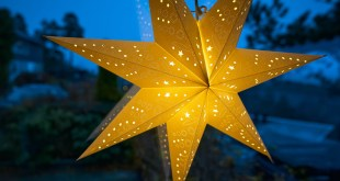 Shining Star   16 December 2020