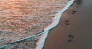 He Walked With God | 21 January 2021