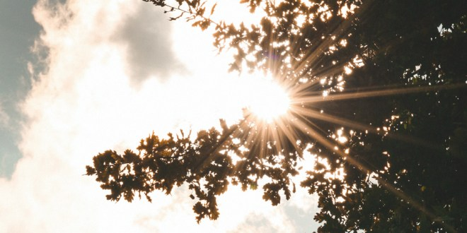 What is the Light of Christ? | 29 June 2021