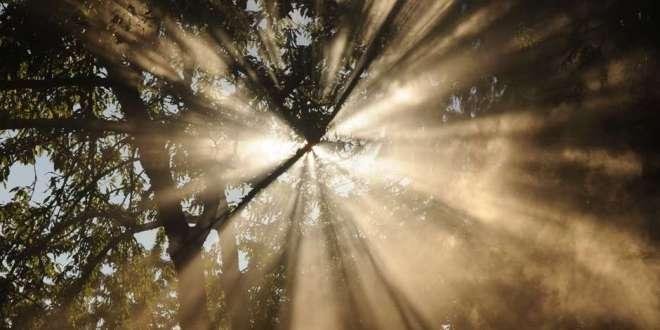 Light Cleaveth unto Light   29 September 2021