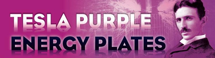 Αποτέλεσμα εικόνας για tesla purple plate