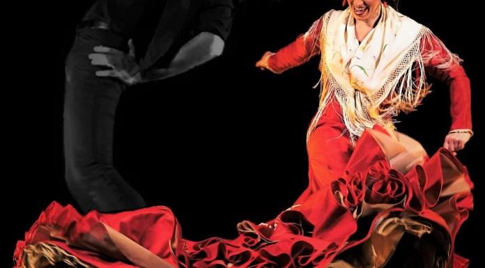 spectacle-flamenco-avec-alexandre-romero-firma-flamenca