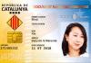les-shoji-citoyens-catalans