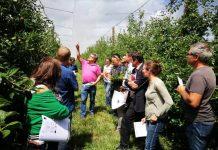 innovaction-2018-un-agriculteur-des-pyrenees-orientales-ouvre-les-portes-de-son-exploitation-le-17-octobre-a-rivesaltes